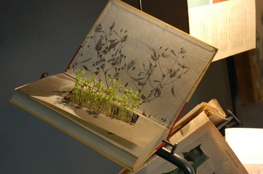 Belgian student exhibition. Photo: W. Arons